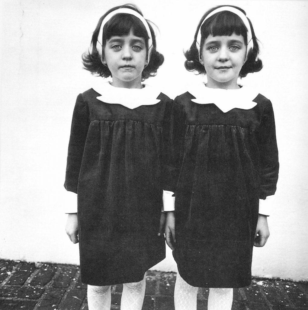 diane arbus twins essay